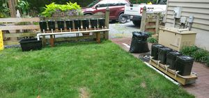 Hydroponics set. for Sale in Easton, MD