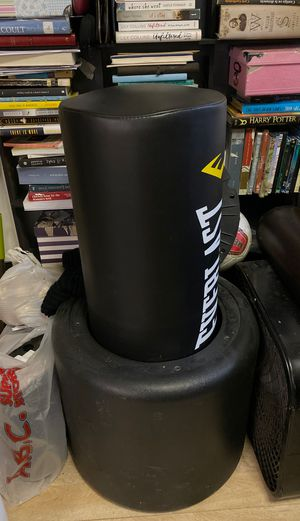 Everlast punching bag & everlast training gloves for Sale in Queens, NY