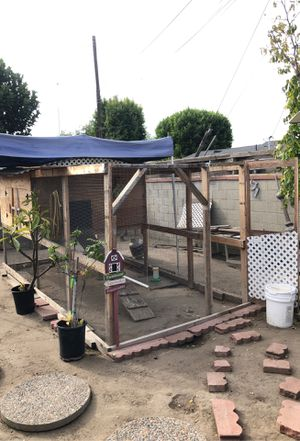 Selling our Chicken 🐔 coop w/8 chickens $350.00 for Sale in Cypress, CA