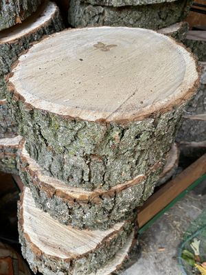 Fresh Wood Slices for Sale in Willow Springs, IL