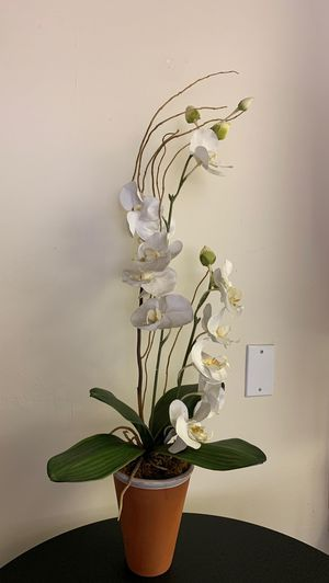 Fake orchid plant for Sale in San Diego, CA