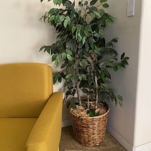 Three Artificial Plants (25usd Each) for Sale in Bakersfield, CA