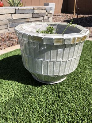 Potted Succulent- 12 in x 13.5 in - Higley/Riggs Pick up for Sale in Gilbert, AZ