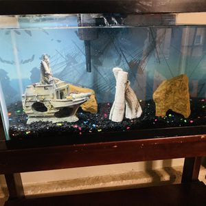 Fish Tank (10Gal) for Sale in San Bernardino, CA