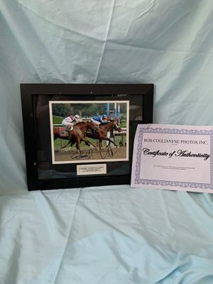 """""""Golden Ticket and Alpha 2012 Travers for Sale in Ocala, FL"""