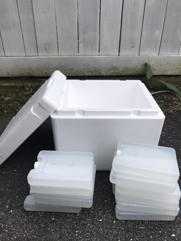 Styrofoam cooler with ice packs