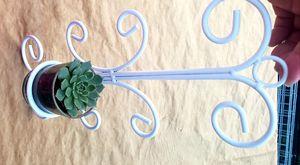 Hanging plant succulent for Sale in Placentia, CA