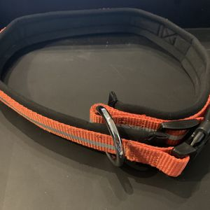 IKEA Reflective Dog Collar - Orange for Sale in Shirley, NY