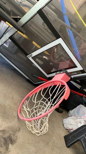 Lifetime shatter-proof basketball hoop for Sale in Dunedin, FL