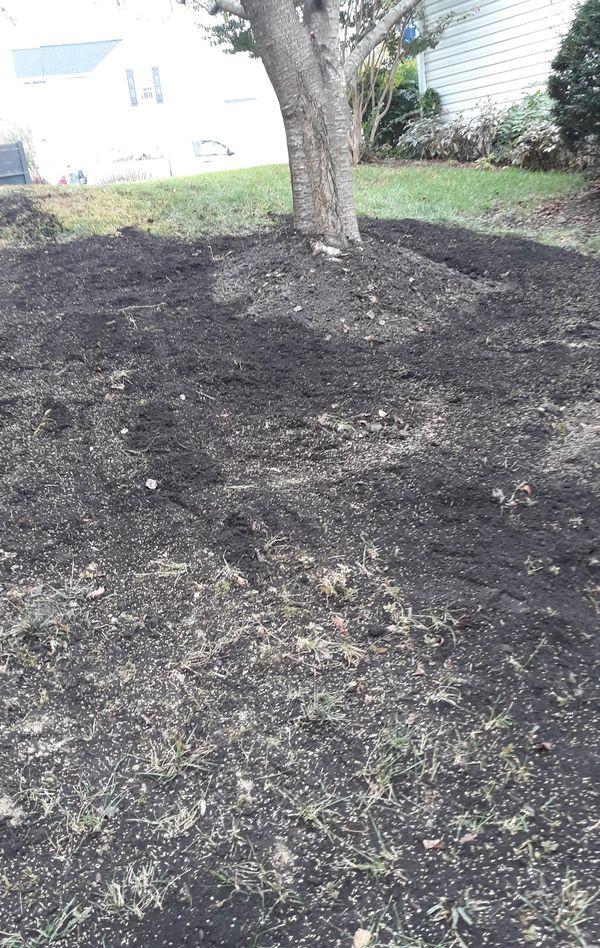 landscaping aerator seed fertilizer