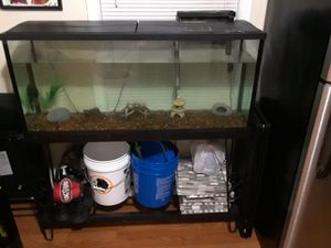 55 gallon tank and stand for Sale in FAIRMOUNT HGT, MD