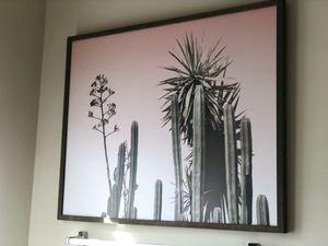 Cactus Pink Art for Sale in Manassas Park, VA