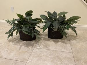 Fake plants for Sale in Shelby Charter Township, MI