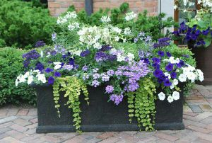 Flowerbed specialist for Sale in D'Iberville, MS
