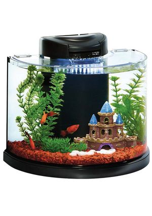 Acuario fish tank with turtles 2 🐢 for Sale in Hollywood, FL