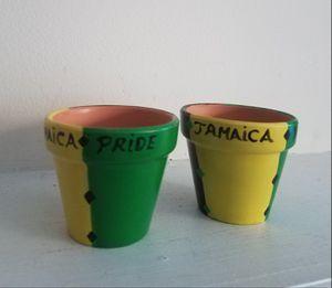 Jamaica Pride Duo for Sale in Atlanta, GA