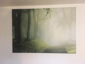 IKEA Wall Picture for Sale in Seattle, WA