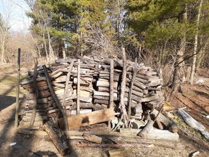 Firewood for sale for Sale in Hastings, MI