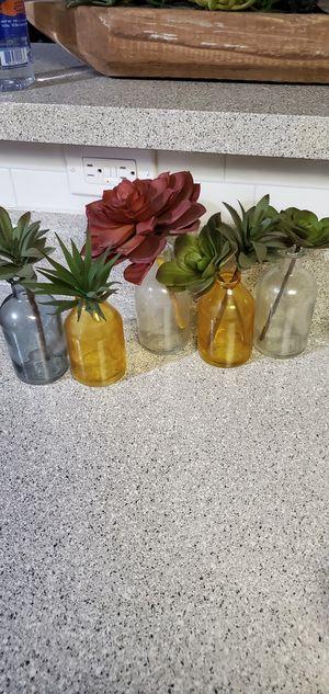 Succulent Decoration for Sale in Watauga, TX
