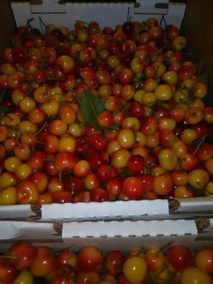 Cherry Rainier Recien Cortada 18 lbs for Sale in Stockton, CA