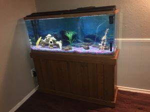 Fish aquarium for Sale in Saginaw, TX