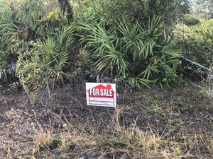 Royal Highlands 1/2 acre for sale for Sale in Spring Hill, FL