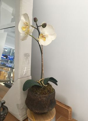 "14"" Plant orchid fake for Sale in Heathrow, FL"