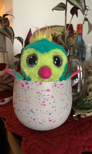 Working Hatched Hatchimal for Sale in NJ, US