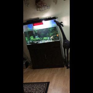 Vendo pesera for Sale in MONTGOMRY VLG, MD
