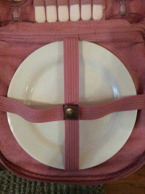Pink Picnic Backpack/ Lunchbox