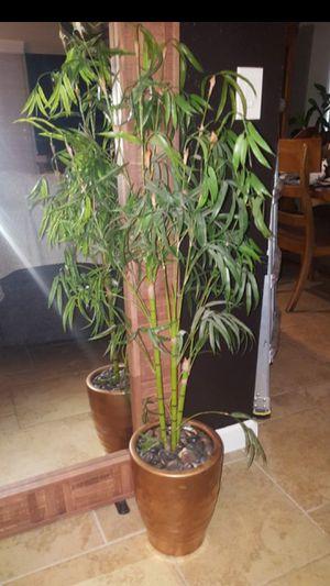 Bamboo Artificial Plant for Sale in Miami, FL