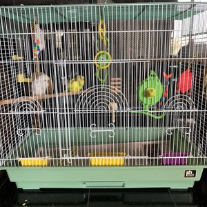 Birds Cage With Everything Inculcated for Sale in Solana Beach, CA
