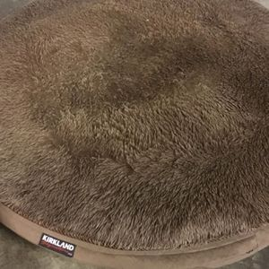 Free dog bed with lots of fluff left. for Sale in Lakewood, WA