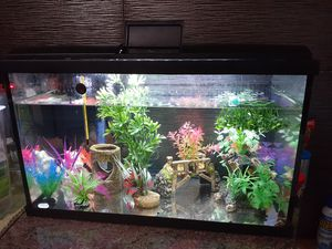 20 Gallon LED Tank like new (only tank and LED lights and Lid) for Sale in Chicago, IL