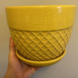 Bright Yellow Plant Pot for Sale in Bailey's Crossroads, VA