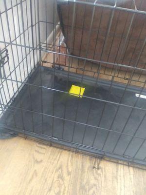 Casita para perro for Sale in Lanham, MD