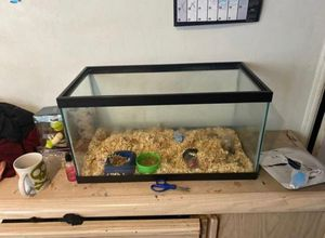 Hamster cage read description for Sale in Pomona, CA