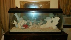 75 gallon Fish tank for Sale in Pittsburgh, PA