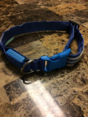 Dog collar large for Sale in Wichita, KS