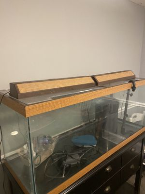 Complete 80 gal aquarium with stand for Sale in Bristol, PA