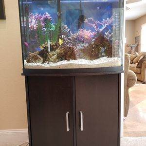 Selling My 3 Year Old Tank With Fish And Stand for Sale in Mission Viejo, CA