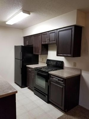 Kitchen cabinets Refinishing (new Doors ) for Sale in Tampa, FL