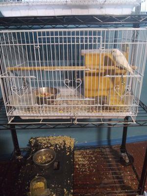 Bird cage for Sale in Vista, CA