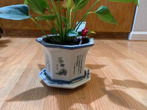 Ceramic vase for Sale in Rockville, MD