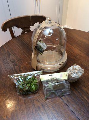 Glass Cloche for Sale in Dallas, TX