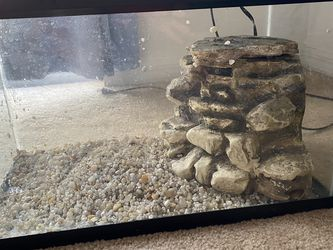 Turtle tank 10g with filter for Sale in Riverview,  FL