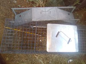 Trapping Cages for Sale in Bailey, CO
