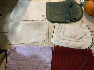 Lot of English Saddle Pads for Sale in Stuart, FL