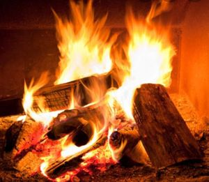 Firewood for Sale in Ionia, MI