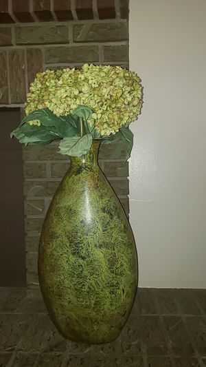 Indoor plant for Sale in Aurora, CO